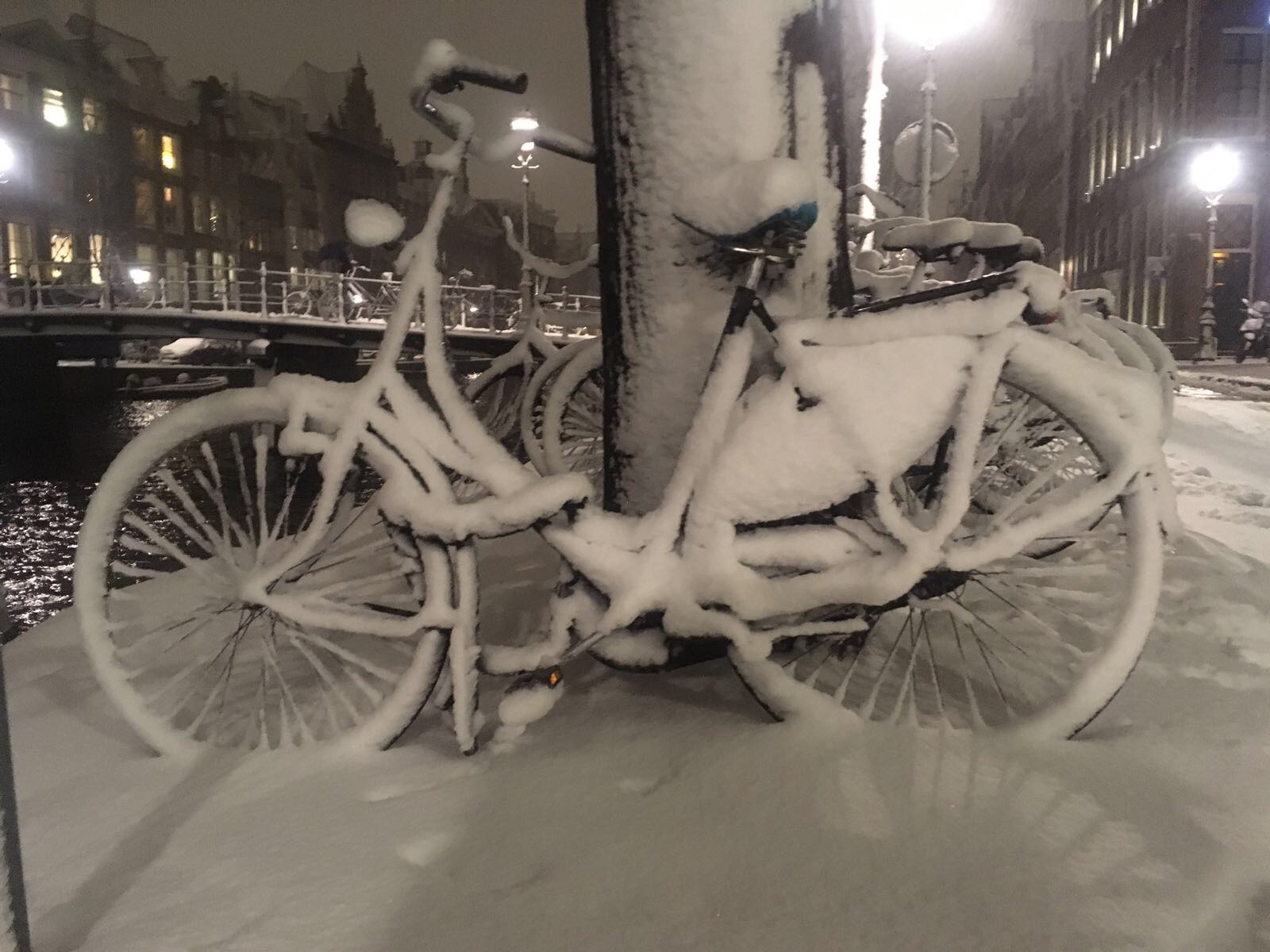 Frozen bike in Amsterdam